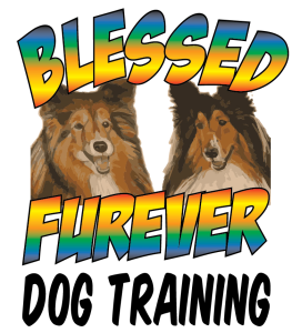 Blessed Furever Dog Training Huntington WV